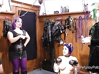 Puppy Throws Sissy Joy Under the Bus